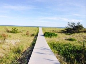 The path to the Beach.  In the Hamptons